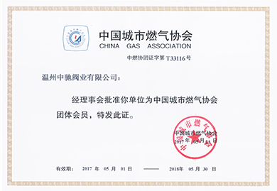 中国城市燃气协会会员证.jpg